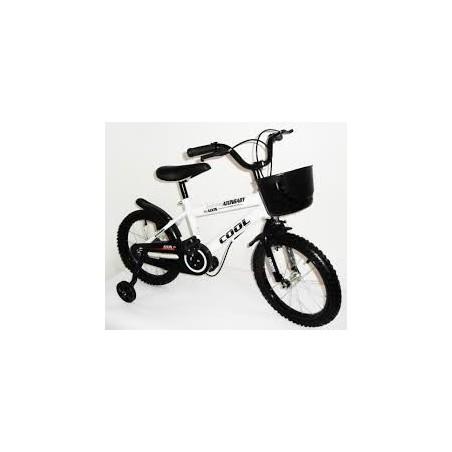 Bicicleta de aluminio 26 TITAN
