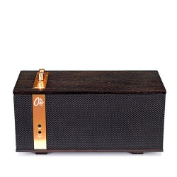 Parlante de lujo bluetooth portatil Klipsch The One